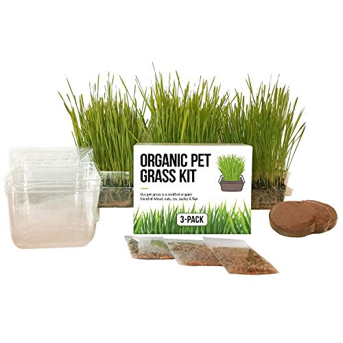 Cat Grass Growing Kit - 3 Pack Organic Seed, Soil and BPA Free containers (Non GMO). All of Our Seed is Locally sourced for pet and pet Lovers. from The Cat Ladies