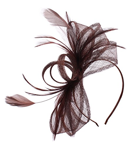 Felizhouse Sinamay Bow Veil Feather Fascinator Headband for Women Derby Party (#2 -