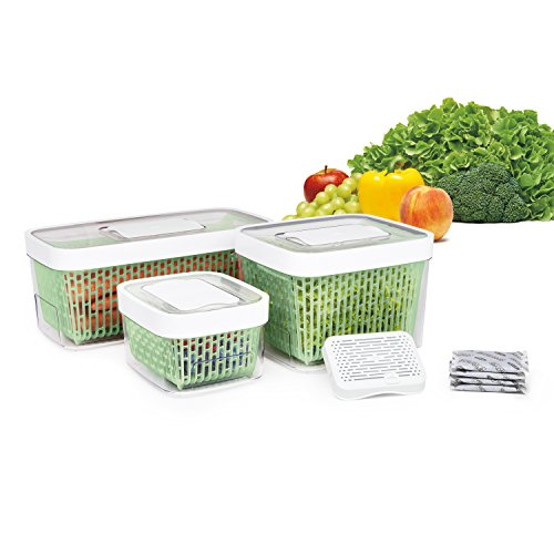 Oxo Good Grips Greensaver Produce Keeper Large Color