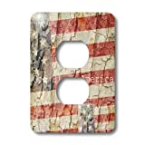 3dRose LLC lsp_28061_6 American Flag God Bless America, 2-Plug Outlet Cover