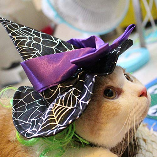 Halloween Pet Wig Magician Hat Cat Cosplay Funny Costume Accessories Adjustable Cap Decorated with Bow for Dogs/Kittens/Puppy. Cacoffay ()