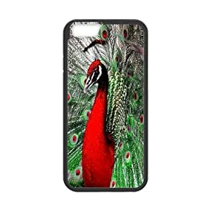 Best Phone case At MengHaiXin Store Peacock Open It's Cock Pattern 189 For Apple Iphone 6 Plus 5.5 inch screen Cases