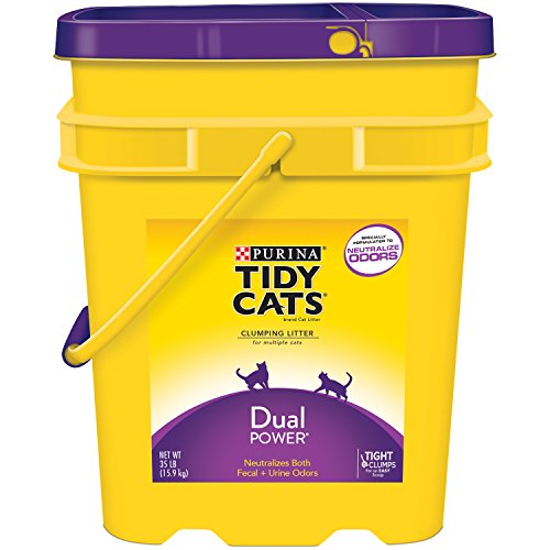 Tidy Cats Cat Litter, Clumping, Dual Power, 35-Pound Pail, Pack of 1 (Tidy Cat 35 Lb Cat Litter compare prices)