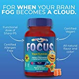 Vitamin Friends - Focus Supplement for Kids