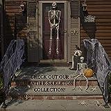 """Halloween Lizard Skeletons Set of 2 - 15"""" Weather"""