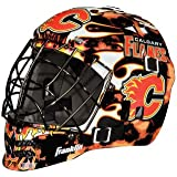 Franklin Sports NHL League Logo Mini Goalie Mask