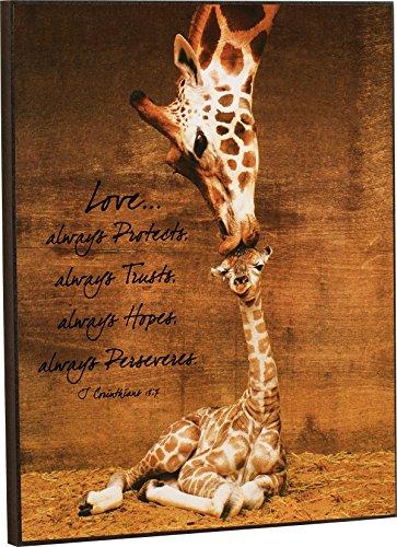 P. GRAHAM DUNN Mother Giraffe Kissing Baby Giraffe Love 1 Corinthians 13:7 16 x 13 Wood Wall Art -