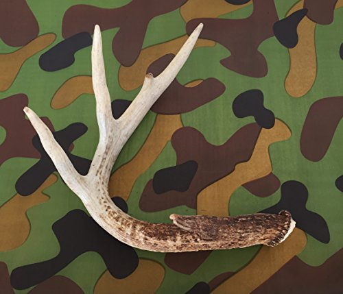 Camouflage Camo Printed Tissue Paper for Gift Wrapping, 24 Sheets -