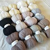 Maslin 12 Colors Wool Fibre Roving Sewing for Needle Felting Hand DIY Fun Doll Needlework Raw Wool Crafts Wool 10g 20g 50g 100g - (Color: 100G 1200G)