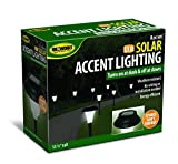 Ideaworks JB5629 Solar-Powered LED Accent Light, Set of 8 (Tools & Home Improvement)