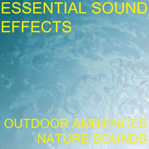 ... Essential Sound Effects 1 - Ou.