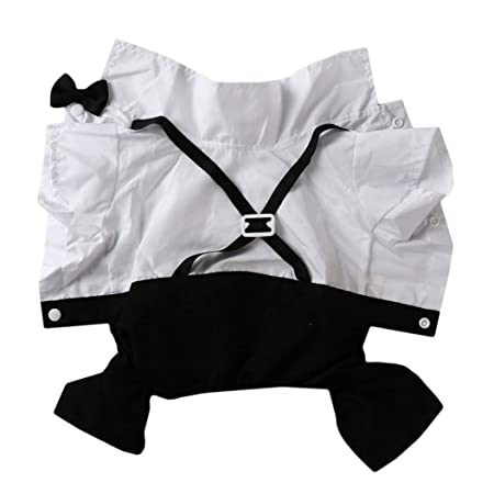 LLZIYAN - Traje de Boda para Mascota, Vestido Formal para Cachorro ...