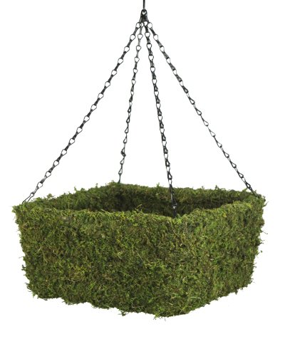 Super Moss (29211) MossWeave Hanging Basket – Square, Fresh Green, Medium (12.5″ Diameter) For Sale
