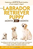 Your Labrador Retriever Puppy Month by Month, Terry Albert and Debra Eldredge, 1615642218