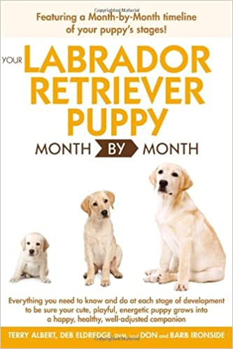 Labrador Dog Training Books Pdf