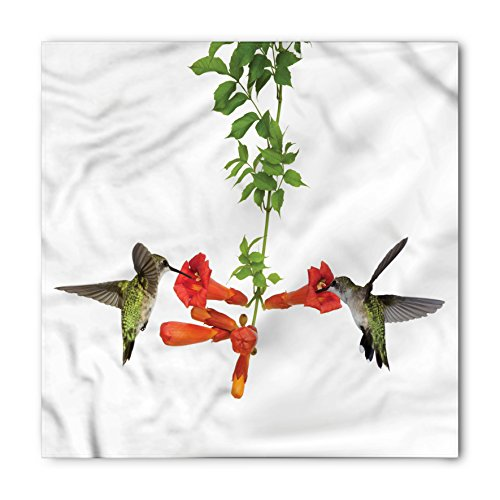 Hummingbirds Bandana by Ambesonne, Two Hummingbirds Sipping Nectar from a Trumpet Vine Blossoms Summertime, Printed Unisex Bandana Head and Neck Tie Scarf Headband, 22 X 22 Inches, Red Black (Sipping Nectar)