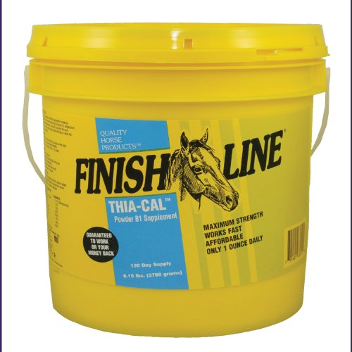Finish Line Horse Products Thia Cal Powder (6.15-Pounds) by Finish Line Horse Products