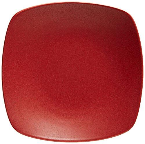(Noritake Colorwave Raspberry 8-1/4-Inch Quad)