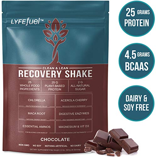 LYFE Fuel Post Workout Recovery Shake | Keto, Vegan & Gluten Free, Plant Based Superfood Protein Mix | Chocolate | 25g of Protein | Soy and Dairy Free | 2 LB Bag