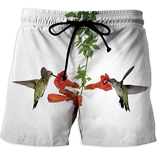 Vineyards Nectar (Men's Fitted Casual Shorts and Quick-Drying Sports Pants,Hummingbirds DecorQuick-Drying Swim Trunks Board Shorts with PocketTwo Hummingbirds Sip Nectar from a Trumpet Vine Blossoms Summertime)