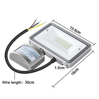 10W LED Flood Light, STASUN DC 12V-24V Motion Sensor Security Light, 950LM (100W Equiv.), 6000K Daylight White, Waterproof, Great for Driveway Patio Garden Path