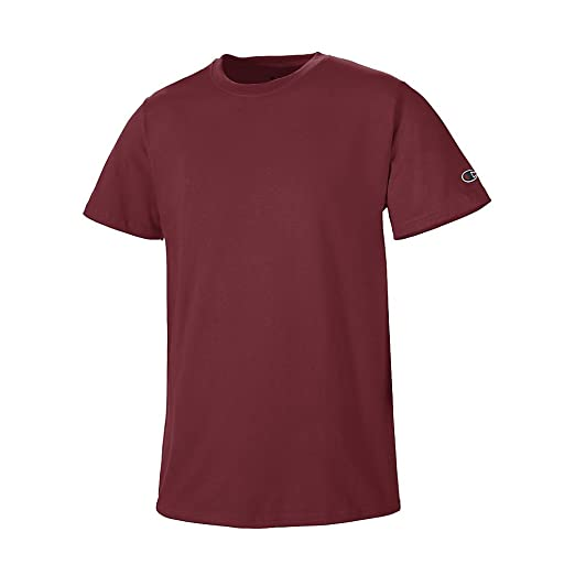 31fdb3c2 Image Unavailable. Image not available for. Color: Champion Mens Basic Tee  Shirt T425_Maroon_M