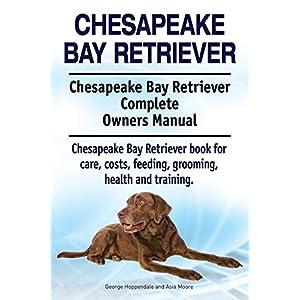 Chesapeake Bay Retriever Dog. Chesapeake Bay Retriever dog book for costs, care, feeding, grooming, training and health. Chesapeake Bay Retriever dog Owners Manual. 1