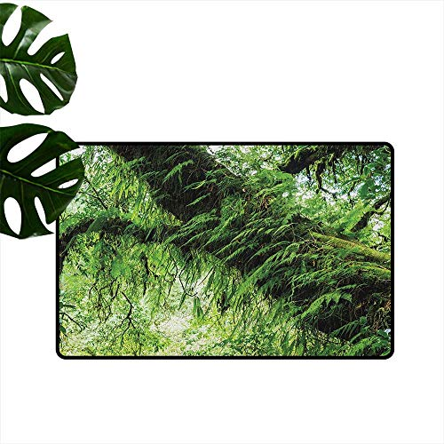 RenteriaDecor Rainforest,Funny doormats Idyllic Atmosphere in Tropical Jungle on Springtime Natural Relaxation Theme 36