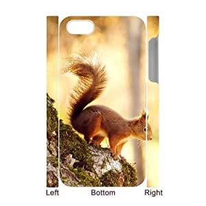 3D IPhone 4/4s Cases, Squirrel 6 Hardshell Cases for IPhone 4/4s {White} by ruishername