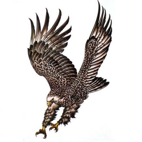 Eagle Tattoo: Amazon.com