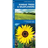 Kansas Trees & Wildflowers: A Folding Pocket Guide to Familiar Species (Pocket Naturalist Guide Series)