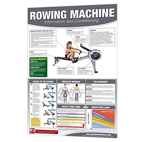 Rowing Machine Cardio Strength Training Poster by Productive Fitness - Strength Poster Anatomy Training