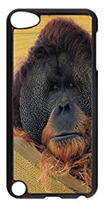 iPod Touch 5 Cases & Covers - Black Gorilla PC Custom Soft Case Cover Protector for iPod Touch 5 - Transparent