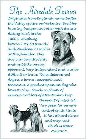 Airedale Terrier perro regalo - Único raza hechos microfibra paño de cocina.: Amazon.es: Hogar