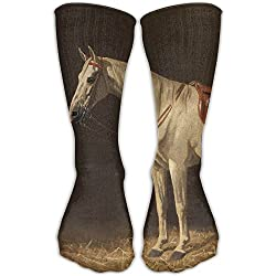 Unisex Classics Socks A SADDLED WHITE HORSE IN THE STABLE Athletic Stockings 30cm Long Sock One Size