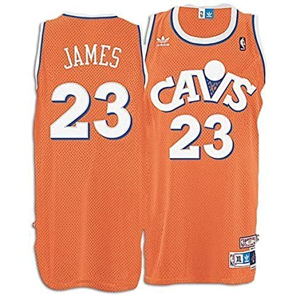 new concept a1dc7 b7047 Amazon.com : LeBron James #23 Cleveland Cavaliers Hardwood ...
