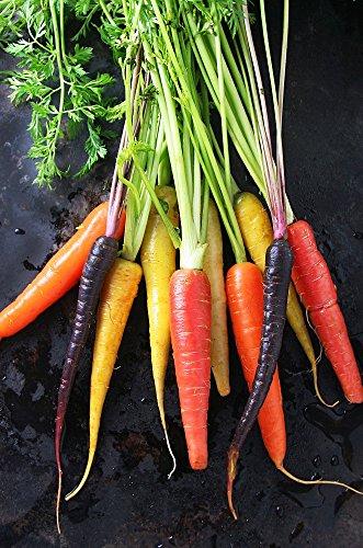 Rainbow Blend Carrot - 100 Seeds (Blend Rainbow)