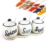 MAI&BAO Set of 3 Spice Jars Seasoning Box, Seasoning Storage Container for Spice Salt Sugar Cruet,Condiment Jars with Spoons for Storing Pepper Cumin Powder Salt Sugar Pepper White