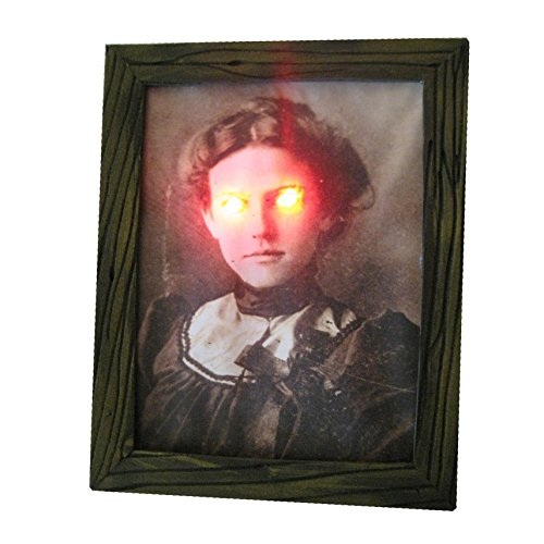 Haunted Antique Lighted Framed Photo Halloween Decoration 8