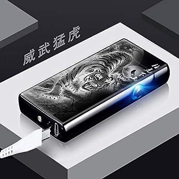 LCottage Detector de Huellas Dactilares Táctil Doble Arco Carga Foto Encendedor con luz USB Cigarrillo electrónico Encendedor Personalización de Regalos, ...