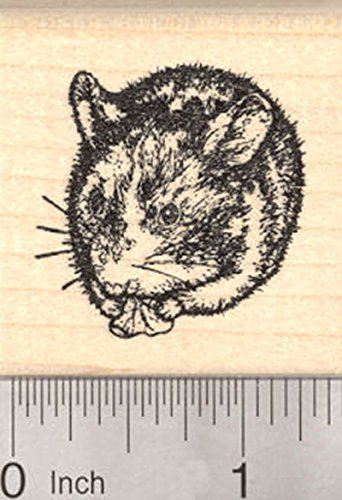 Small Dwarf Hamster Rubber Stamp