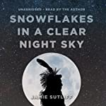 Snowflakes in a Clear Night Sky | Jamie Sutliff