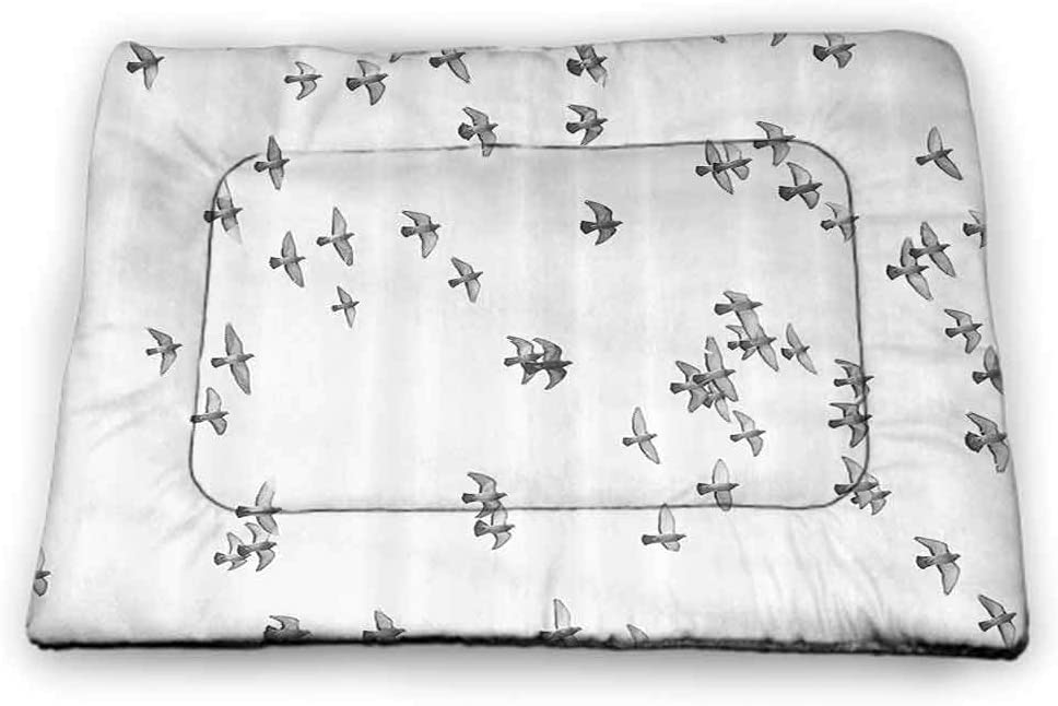 carmaxs Dog Food Mat Lifestyle Personalized Pet Placemat Group of Pigeon Gulls Birds Dove Flying on Sky Urban Scenic Move On Photo Print Grey White