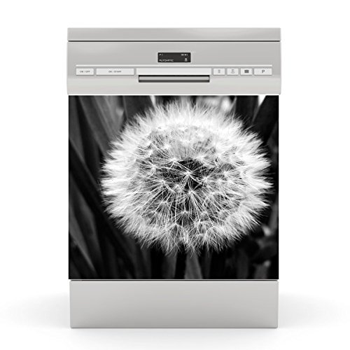 Dishwasher Stickers Dandelion Black wodtke-werbetechnik
