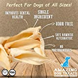 Lamb Ears (25 Pack) - Premium - All Natural Rawhide Alternative - Excellent Dog Chew