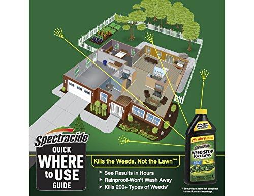 ارخص مكان يبيع Spectracide Weed Stop For Lawns Concentrate, 40 oz