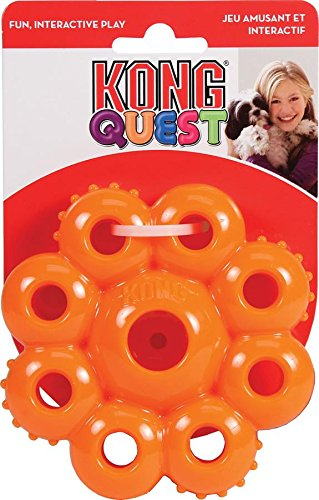 KONG Quest Star Pods Treat Dispensing Dog Toy, Small, Colors Vary (Quest Kong compare prices)