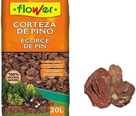 Flowers 4-90238 - Corteza de pino decorativa 30/50: Amazon.es: Bricolaje y herramientas