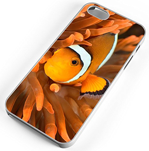 iPhone Case Fits iPhone 8 Clownfish Anemone Ocean Reef Tank Clear -