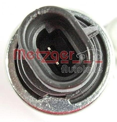 Metzger 0899012 Válvula control, ajuste de levas: Amazon.es: Coche y moto